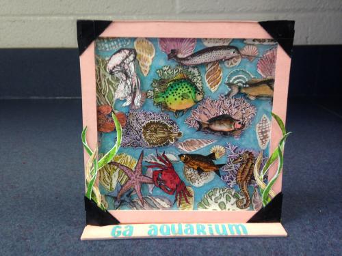 GA Aquarium - William